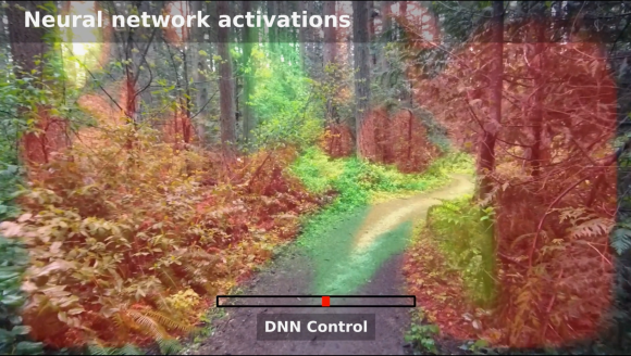 TrailNetActivation1